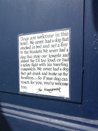 Abbekas, Suecia: Dogs are welcome!