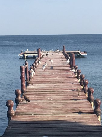 Rusinga Island Lodge: photo0.jpg