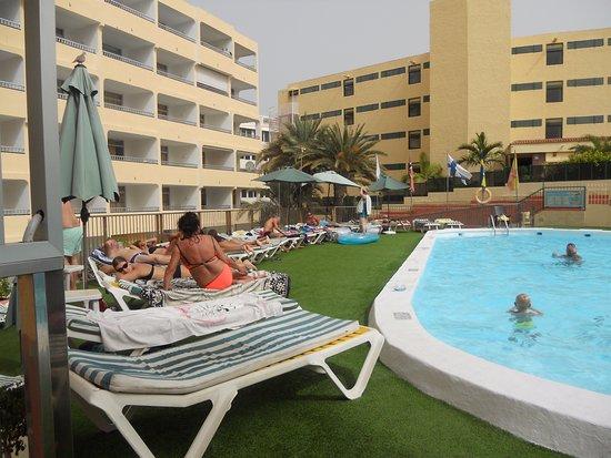 Apartamentos Amazonas : At the pool