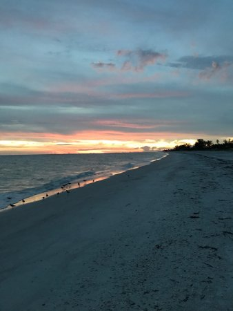 Silver Sands Gulf Beach Resort: photo0.jpg
