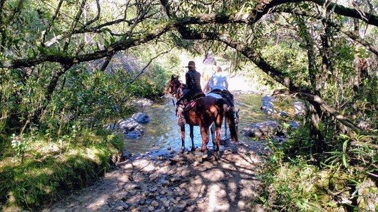 Maldonado, Uruguay: De cabalgata cruzando el arroyo