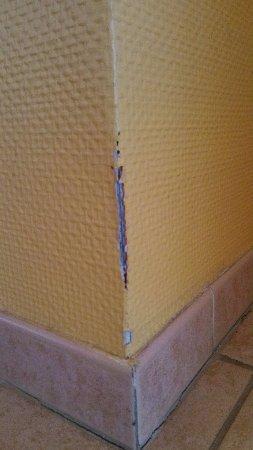 Hotel de Massane : Papier peint abîmé