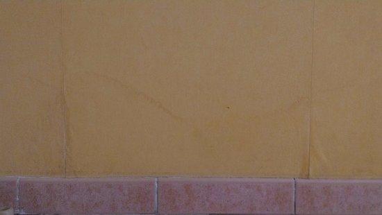 Hotel de Massane : Papier peint défraîchi