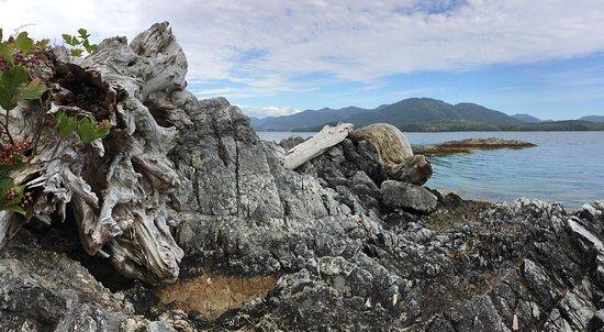 Port Alberni, Kanada: photo1.jpg