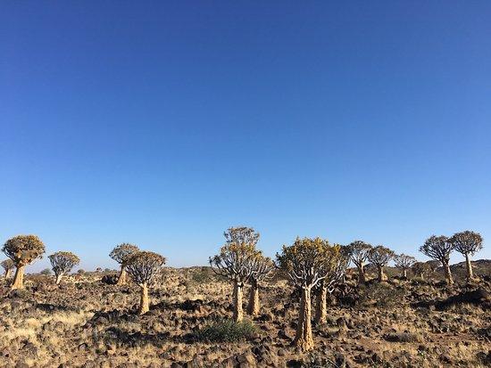 Keetmanshoop, ناميبيا: photo4.jpg