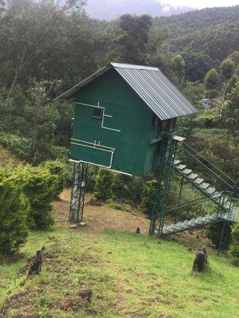 Camp Noel: high platform room