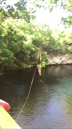 Cabarete, Dominikanska Republiken: This was scary, but I did it! Zip line into the lagoon!
