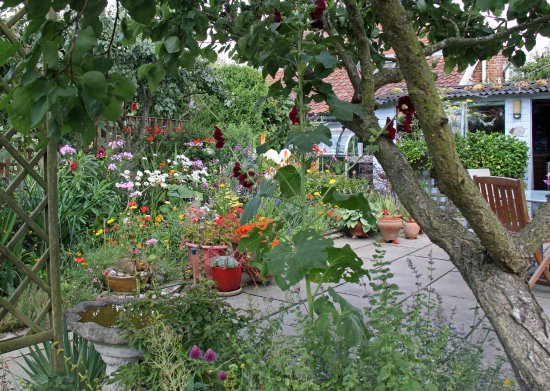 Saxmundham, UK: The garden overlooked by our room