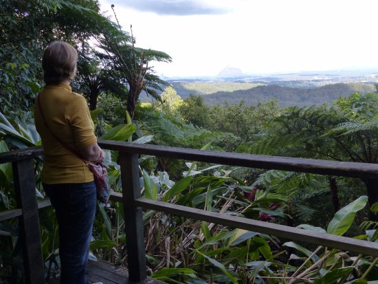 Maleny, Αυστραλία: The rainforest upper level walk from the car park is brief but a delightful view is had!