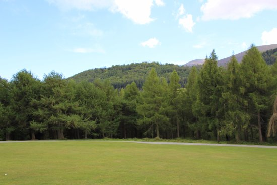 Tollymore Forest Park: View