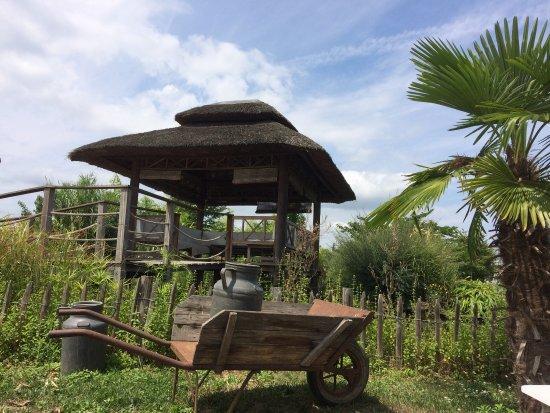 Sainte-Bazeille, France: Un moment de détente au Payung