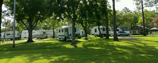 Monroe, LA: View of campers