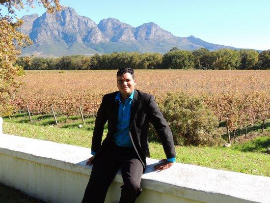 بارل, جنوب أفريقيا: As vinícolas da África do sul, além de produzirem excelentes vinhos tem uma boa estrutura.