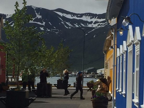 Siglufjordur, Islandia: Just steps away from the campground