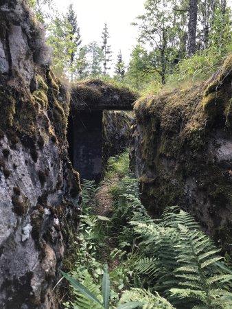 Arjang, السويد: Sjöänd Skans / Fort 118