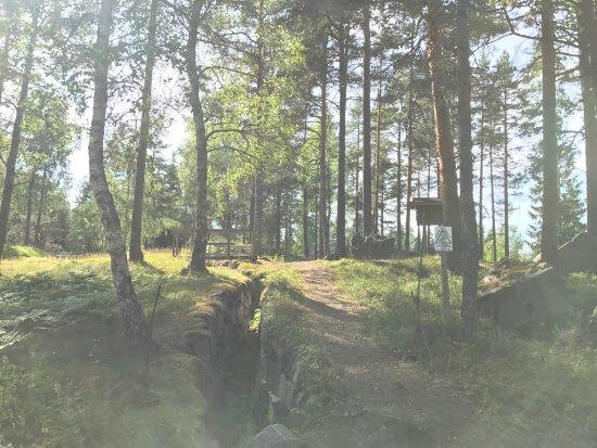 Arjang, สวีเดน: Sjöänd Skans / Fort 118