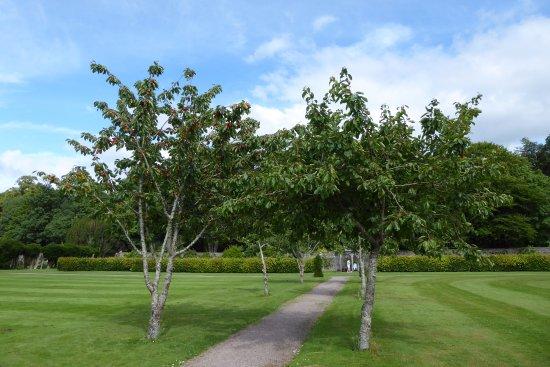 Muckross House, Gardens & Traditional Farms: Garten