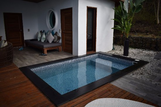 ‪فانوا ليفو, فيجي: Plunge pool and outdoor area of our villa.‬