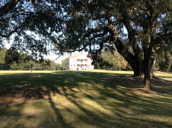 Drayton Hall from the drive in