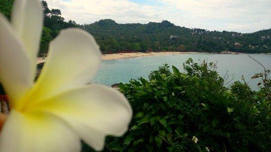 Bilde fra Panviman Resort - Koh Pha Ngan