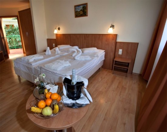 Zalakaros, Węgry: Our Standard Double Room