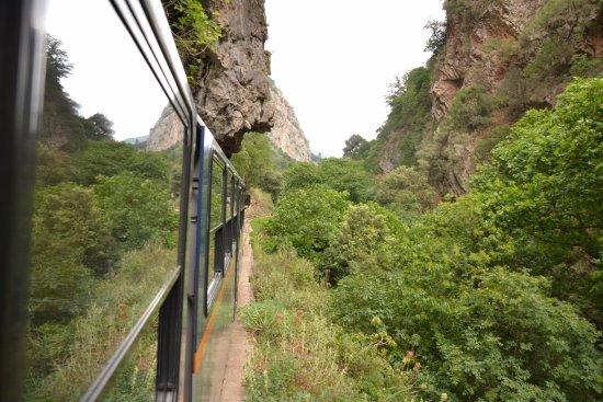 Kalavrita Railway - Odontoto : El tren entre rocas, árboles y túneles. Había ejemplares de arrayanes.