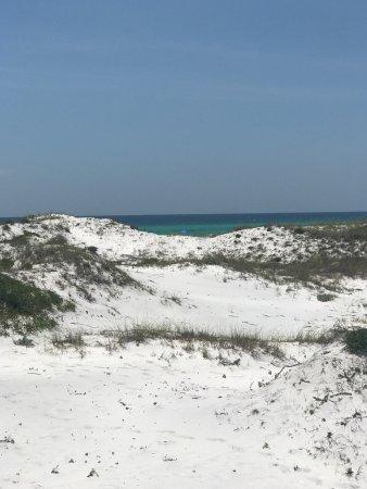 Topsail Beach State Preserve: photo2.jpg