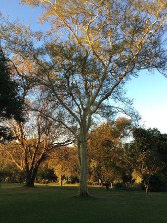 Louis Trichardt, Sudafrica: Cuckoos Nest Guest House