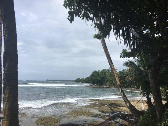 Sobre las Olas: Almorzar mientras el mar relaja, la brisa acaricia, vino y un platillo de pulpo al ajillo delici