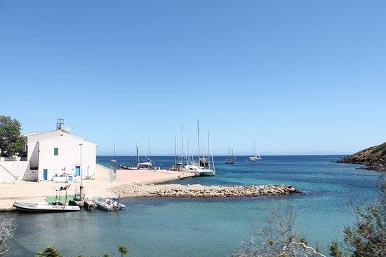 Asinara Photo