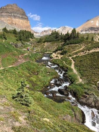 Banff Trail Shoes Review