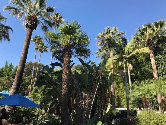 Corona, CA: photo6.jpg