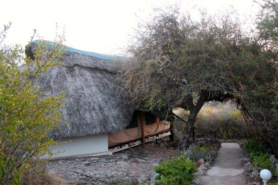 Lake Manyara National Park, Tanzania: One room building