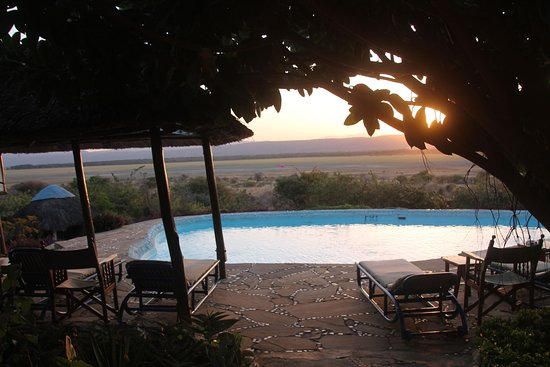 Manyara Wildlife Safari Camp: Pool with sunset views