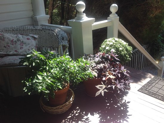 Highlawn Inn: Flowers on the porch