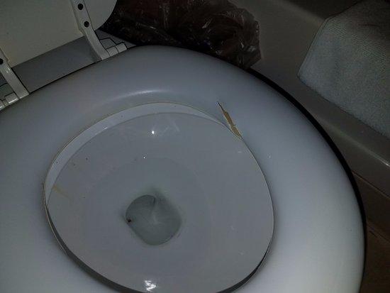 Atlantic Motel: Rip in toilet seat