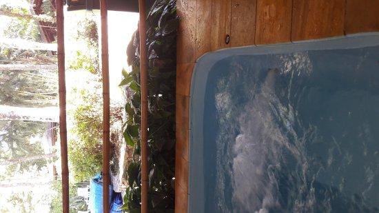 Boicucanga, SP: Pousada Canto Verde