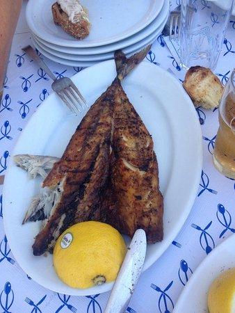 Milopotas, Grecja: Sgombro al sale, zuppa di pesce, polpi al sole