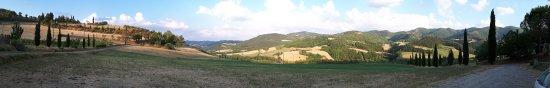 Rocca San Casciano, Italien: Agriturismo La Sfoieria