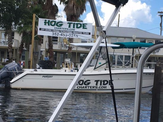 Homosassa, FL: Hog Tide Fishing Charters other boat.