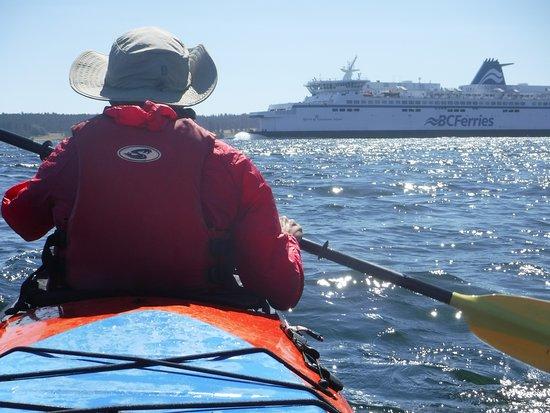 Pender Island Kayak Adventures: Ferry Crossing between Portland & Moresby Islands