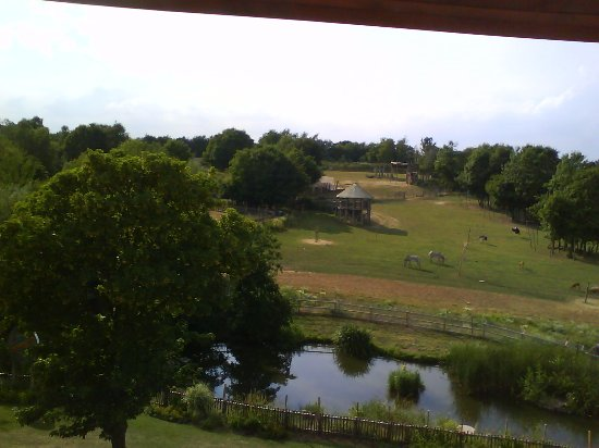 Chessington World of Adventures Resort: View from hotel window