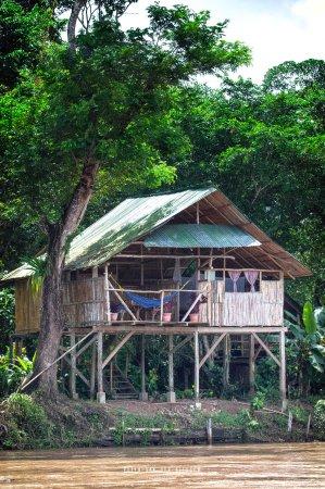 Boca Sabalos, Nikaragua: Tarzan Cabin