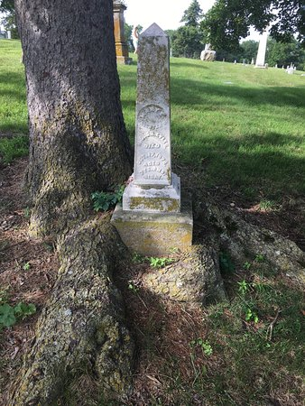 Weston, MO: tree wrapped around marker