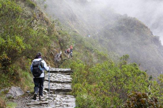 Amazon Andes Peru