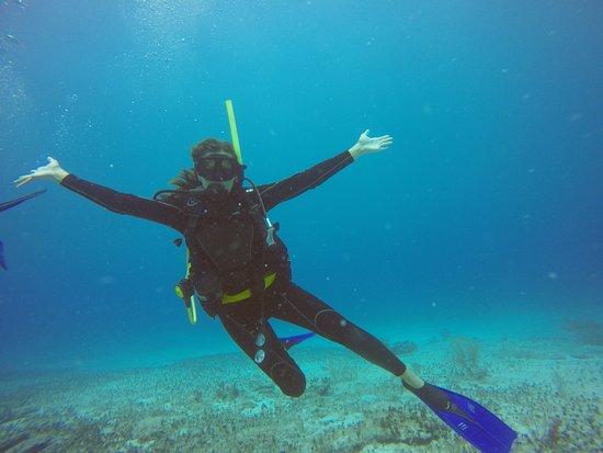 Scuba Playa Dive Shop : GOPR4865_1500497711769_high_large.jpg
