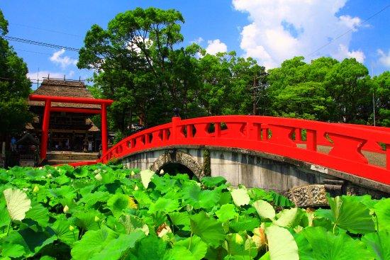 Hitoyoshi, Japonia: 禊橋ごしに見る神社