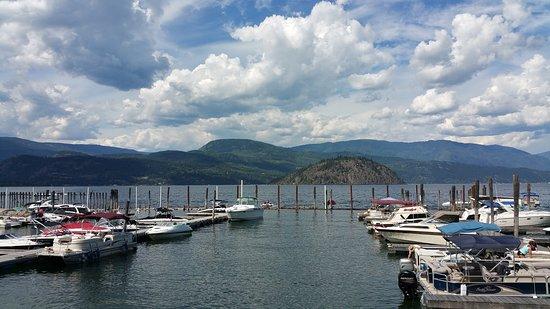 Blind Bay, แคนาดา: Marina