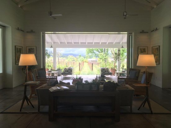 Larkmead Vineyards : Beautiful patio porch that looks out onto a wrap-around-patio and gorgeous vineyards!