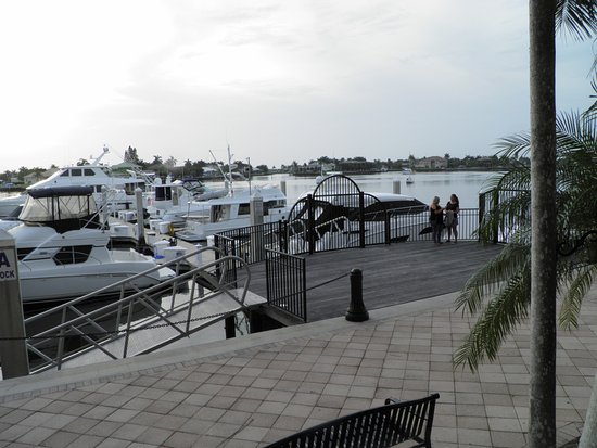 Mangos Dockside Bistro: View from your table
